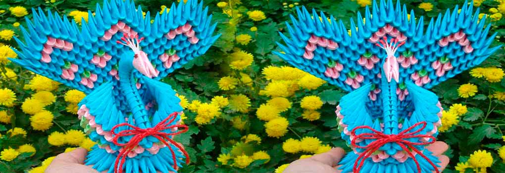 Pavo real 3D