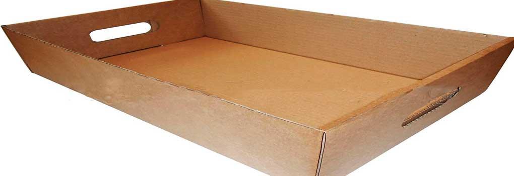 Mini estante de carton