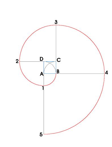 Espiral de 4 Centros