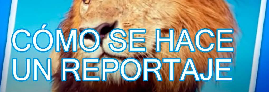 Pasos-para-Hacer-un-Reportaje-uncomohacer